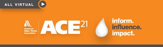 ACE21 All Birtual