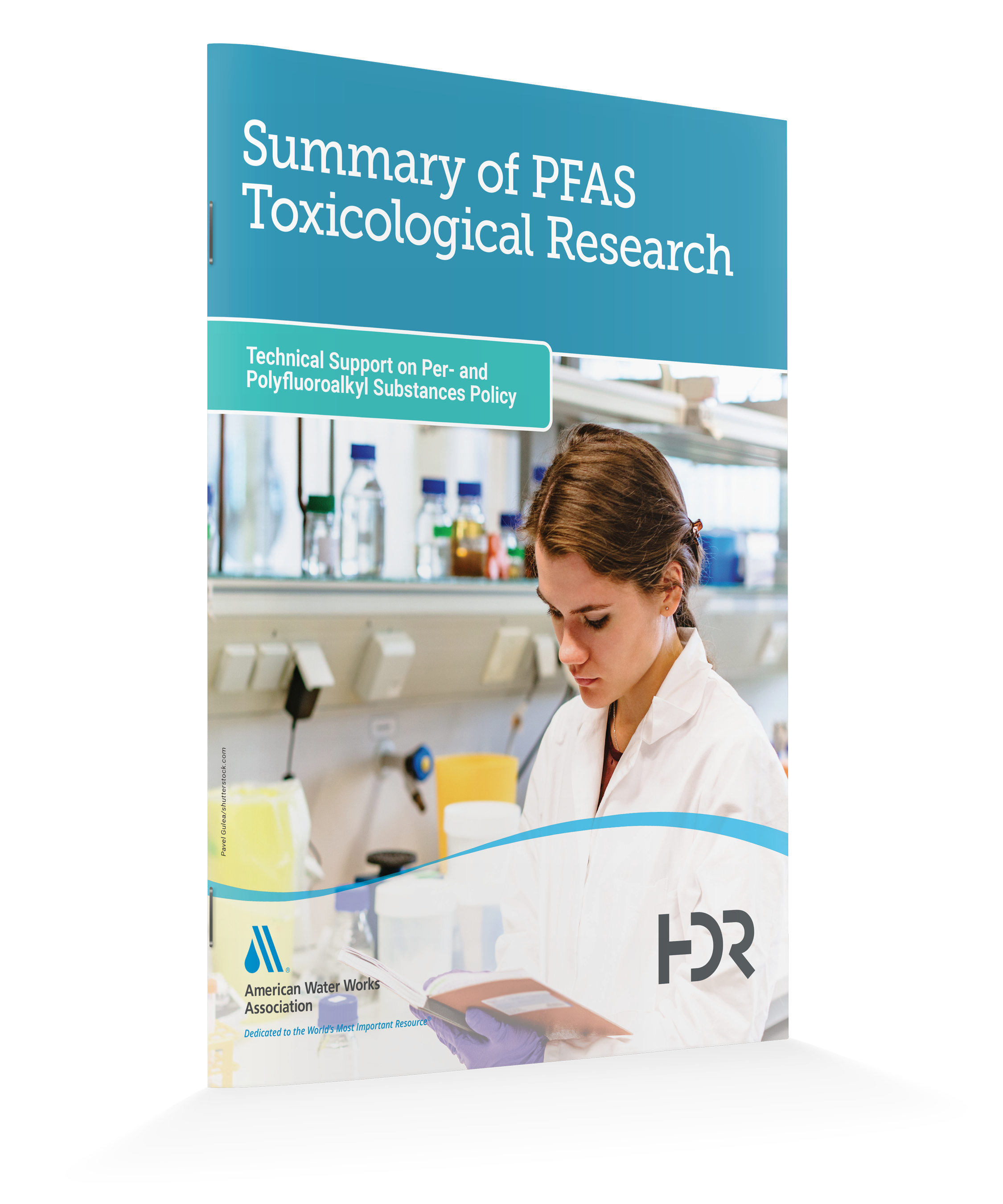 Summary-of-PFAS-Tox-Research2